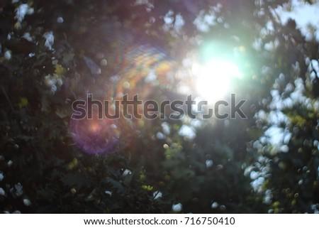 Sun rays #716750410
