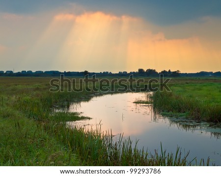 Sun rays are breaking through the clouds above lowland nature reserve