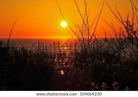 Sun rises over the ocean on Cape Cod