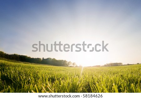 Sun rising behind a green field, perfect as setting or backdrop