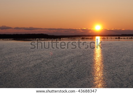 sun rising over a lake in the forrest
