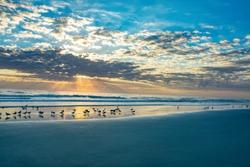 Sun rising over horizon, beach illuminated with sunlight, beautiful sky reflected on the beach. Beautiful coastline scenery. Jacksonville Florida, USA.
