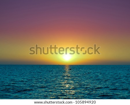 Sun Rocketing to the Sky