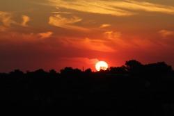 sun russia sunset sundown outward things sky heaven palate nature animalism