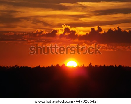 sun sets over the tops of forest trees in clouds