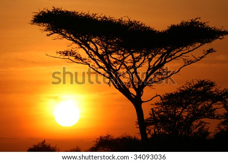 Sun Setting over Serengeti Wildlife Conservation Area, Safari, Tanzania, East Africa - stock photo