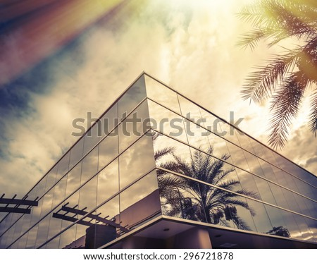 Sun shining brightly on window of office with palm tree reflecting in glass