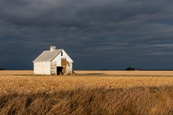 Sun shining on an old, white, wooden corn crib in the middle of a harvested corn field, with dark, ominous storm clouds building in the background