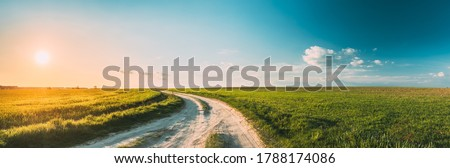 Sun Sunshine In Sunset Bright Sky. Beautiful Evening Sky Above Rural Landscape With Country Road. Young Green Wheat Field Meadow And Countryside Road. Agricultural And Weather Forecast Concept