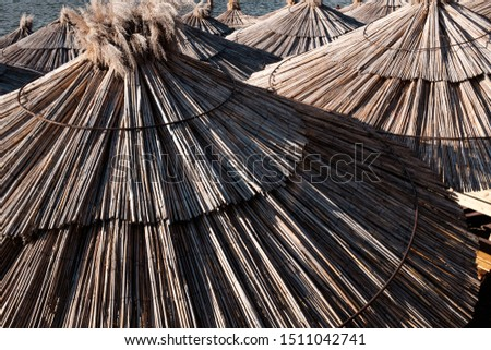 Sun umbrellas, dry reed thatched parasols, closeup  #1511042741