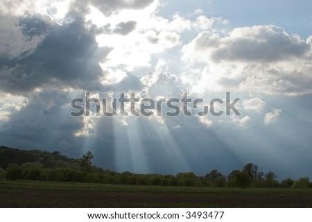 Sunbeams #3493477