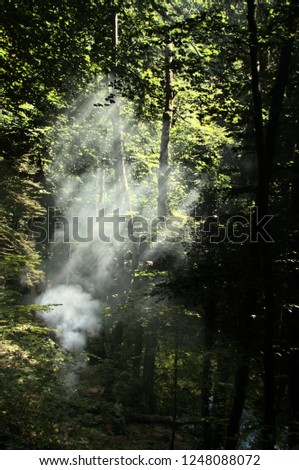 Sunbeams in smoke; barbecue in the woods of Romandie, Gorges de l'Areuses #1248088072