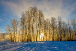 sunbeams through fog and trees along the flathead river, Montana on a cold and frigid winter morning.