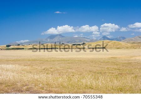Sunburned valley in Marlborough, New Zealand