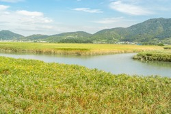 Suncheonman Bay or Suncheon Bay wetland reserve formerly Suncheonman Bay Ecological Park