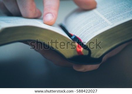 Photo of  Sunday readings, Bible