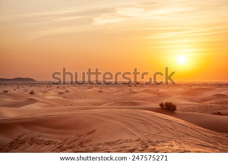 Sundown in desert. Desert background. #247575271