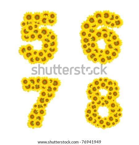 sunflower alphabet isolated on white background
