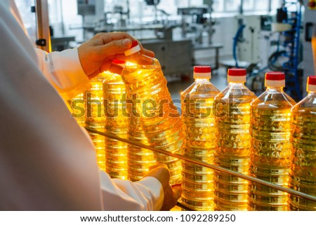 Sunflower oil. Olive oil. The employee of the factory in a white coat holds a bottle of oil in his hands on a conveyor belt. Production of oil. stock photo