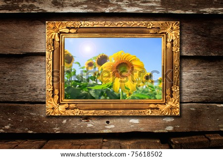 sunflower photo in classic frame on wood background