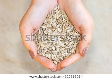 Sunflower seeds\' kernel in woman hands