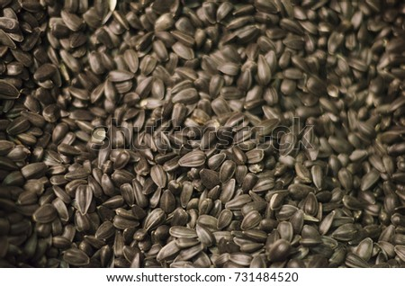 Sunflower seeds. Seeds #731484520