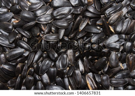 Sunflower seeds.Sunflower seeds.Background of sunflower seeds.