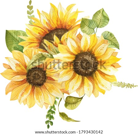 sunflowers bouquet watercolor hand painted composition Foto stock ©