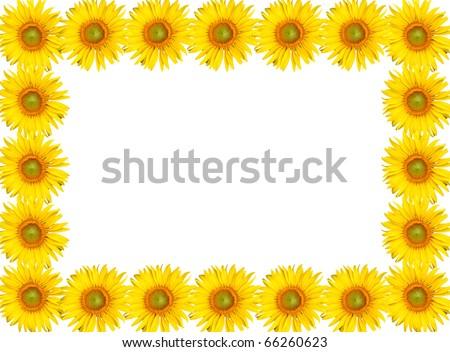 Sunflower Frame Sunflowers Frame
