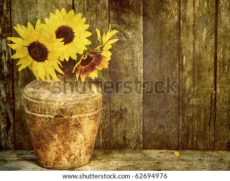 Sunflowers in a vase on a grunge background with copy space.  Grunge textured.