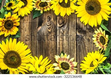 Sunflowers On Rustic Wood Background Flowers Backgrounds 322136648