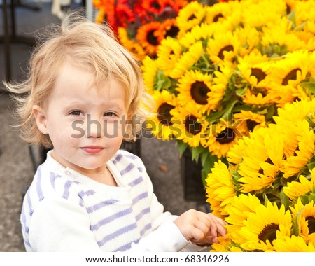 Sunflowers on sale at local farmer's market.