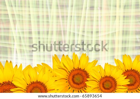 sunflowers wallpaper. sunflowers wallpaper. stock
