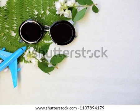 Sunglasses and green leafs on the white background with the space. Summer vacation concept  #1107894179