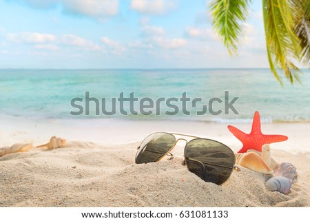 Sunglasses on sandy in seaside summer beach with starfish, shells, coral on sandbar and blur sea background. Concept of recreation in summertime on tropical beach.  vintage color tone styles. #631081133