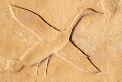 Sunk relief on temple wall figure a flying duck. Abydos temple middle Egypt.