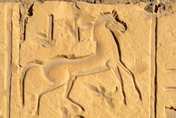 Sunk relief on temple wall figure a horse. Abydos ,middle Egypt
