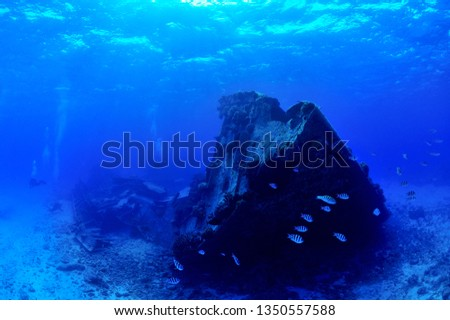 sunken ship and aircraft in saipan #1350557588