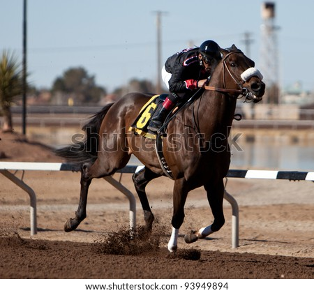 SUNLAND PARK, NM – JANUARY 29: Happy Rumor ridden by Macario Rodriguez speeds down the track towards the 6th race win during the Claiming Series on January 29, 2012 in Sunland Park, New Mexico.