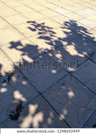 Sunlight high angle view Nature no people day pattern focus on shadow street outdoors Footpath City Land full frame