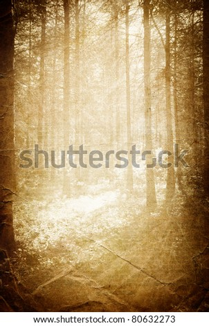Sunlight in the forest, vintage background with space for text.