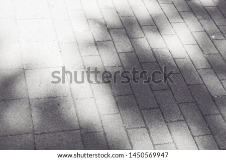 Sunlight through foliage. Shadow from foliage on paving slabs #1450569947