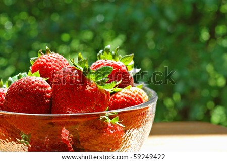 Sunlit bowl of fresh strawberries on outside table with summer foliage in background.  Macro with shallow dof.