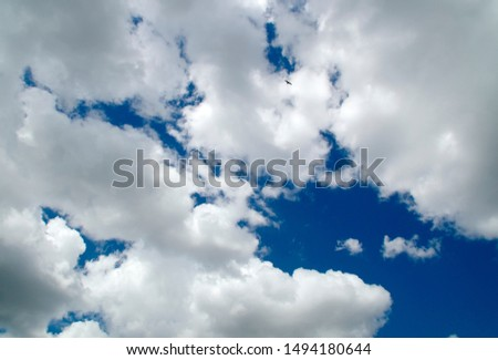 sunlit clouds are filling the scene with some some blue sky showing and egret bird flying high in image.