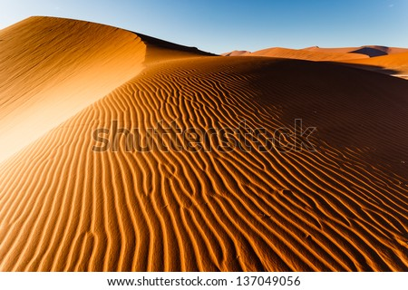Sunlit Namibian desert dunes sand ripple pattern rises to top ridge. This desert is the oldest in the world completely devoid of surface water.