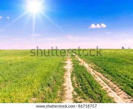 Sunlit Path To Pradise