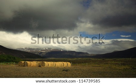 Sunlit straw bales in a meadow, Iceland