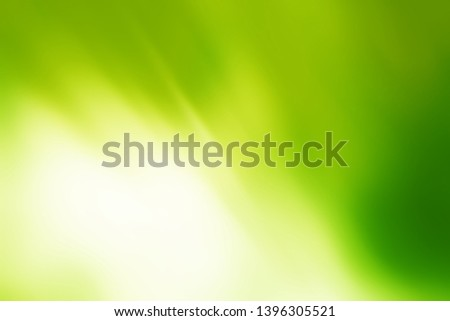Sunny abstract green nature background. Fresh nature.