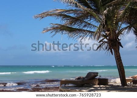 Sunny Afternoon Beach #765928723