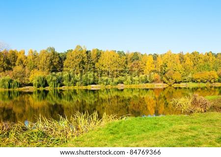 Sunny autumn in Russia